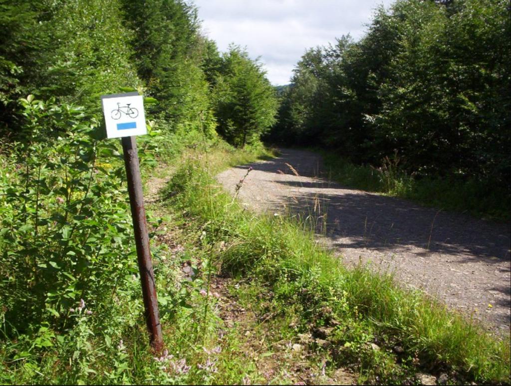 szlak rowerowy przykład