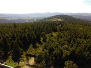 Wielka Sowa, najwyższy szczyt Gór Sowich w Sudetach Środkowych należący do Korony Gór Polski. Opis szlaków i tras wycieczkowych.