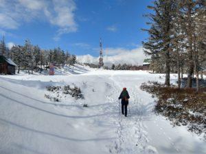 Skrzyczne, najwyższy szczyt Beskidu Śląskiego. Opis szlaków, trasy wycieczkowe, atrakcje turystyczne.