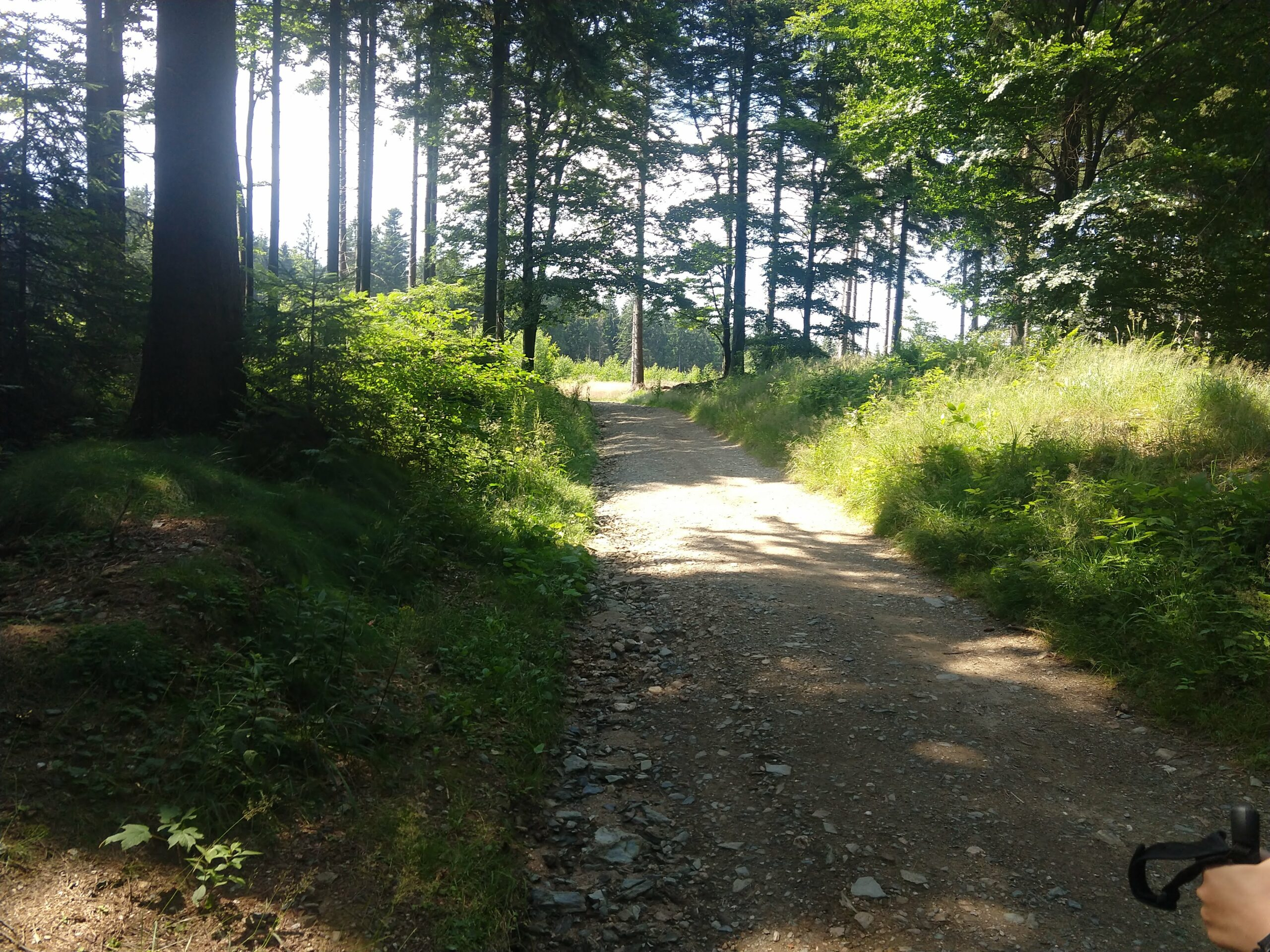 szlak na wielką kopę