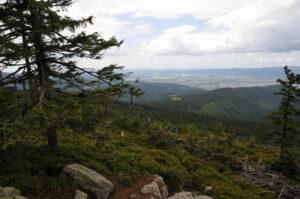 Czarna Góra w Sudetach. Szczyt idealny na krótką wycieczkę w rodzinnym gronie. Opis szlaku, przydatne informacje.