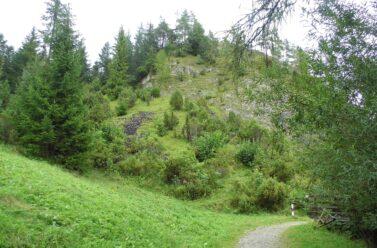 Rezerwat Biała Woda w Pieninach. Piękny park krajobrazowy idealny na krótką relaksującą wycieczkę. Opis szlaku, mapy, dojazd.